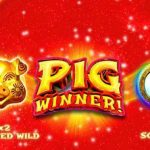 online slot reviews Pig Winner
